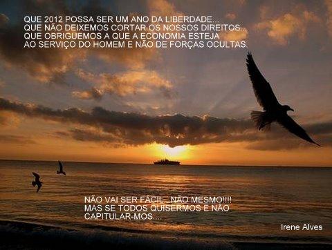 Este blogue criado em Janeiro de 2011, terminou o ano com 7.448 visitas reais.A todos obrigada.IreneAlves