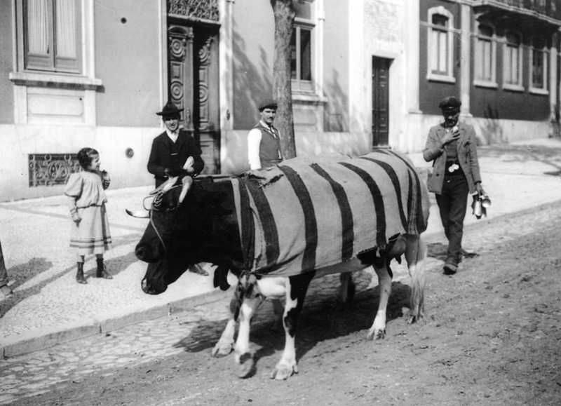 leite1910