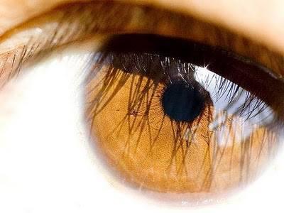 olhos de amendoa