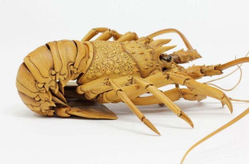 lagosta5