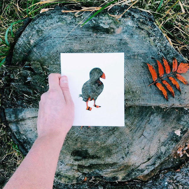 animal-paper-cutout-silhouettes-nikolai-tolstyh-1