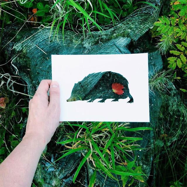 animal-paper-cutout-silhouettes-nikolai-tolstyh-15