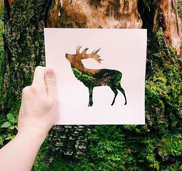 animal-paper-cutout-silhouettes-nikolai-tolstyh-thumb640