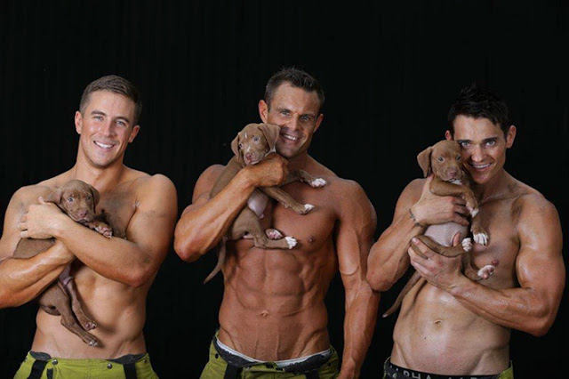 hot-firefighters-with-puppies-calendar-charity-australia-13